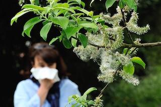 Allergia: prevenirla e curarla con i rimedi omeopatici