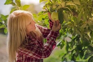 La dieta giusta per la menopausa: cosa mangiare per combattere i sintomi
