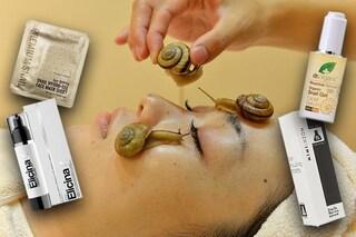 Bava di lumaca: tutti i benefici dei cosmetici per pelle e capelli