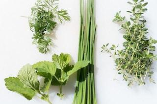 8 erbe benefiche per la salute da utilizzare in cucina