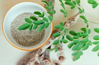 """Moringa: proprietà benefiche, usi e controindicazioni della """"pianta miracolosa"""""""