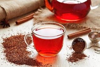 Rooibos: proprietà benefiche e modo d'uso del tè rosso africano