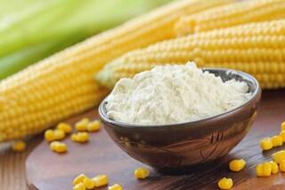 Maizena: proprietà e utilizzi dell'amido di mais