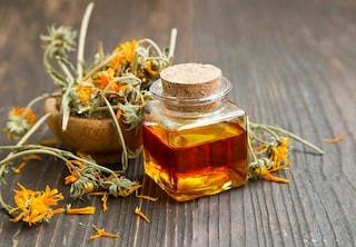 Olio di calendula: proprietà, come prepararlo e utilizzi