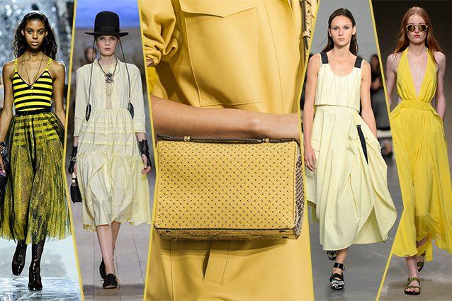 da sinistra Dior, Elisabetta Franchi, Tod's, Sportmax, Trussardi