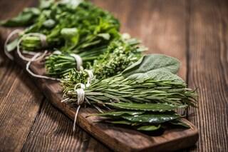 Come conservare le erbe aromatiche: tutti i metodi per preservarne gusto e aroma
