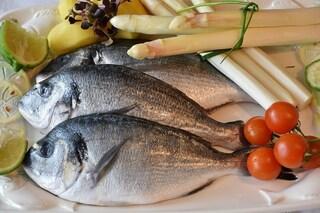 Pesce fresco e fertilità: i cibi da mangiare per favorire il concepimento