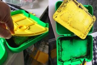 Smonta il cestino per il pranzo del figlio, rimane inorridita: era contaminato dalla muffa