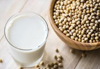 Intolleranza al lattosio: 6 bevande alternative al latte vaccino