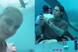 Chiara Ferragni e Fedez in viaggio di nozze: ecco quanto è costata la cena nel ristorante sott'acqua