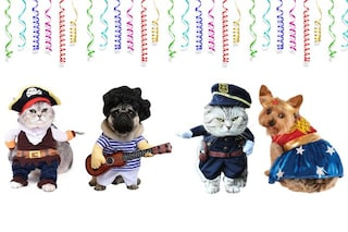 Costumi di Carnevale per cani e gatti: i più divertenti per gli amici a quattro zampe