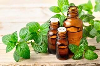 Olio essenziale di menta piperita: proprietà, utilizzi e controindicazioni