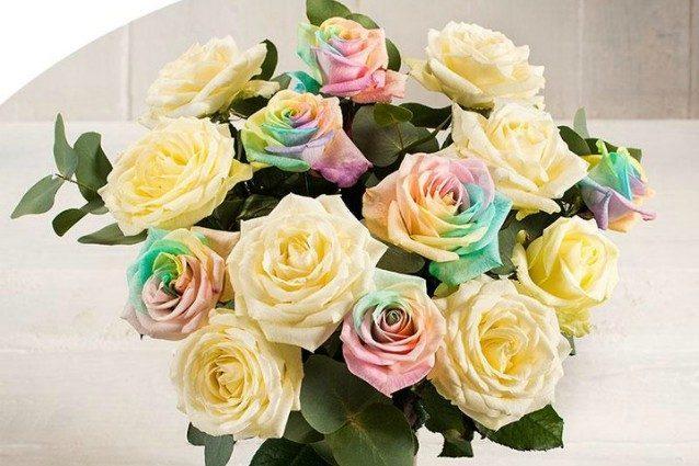 San Valentino, le rose arcobaleno per l'amore in tutte le sue forme