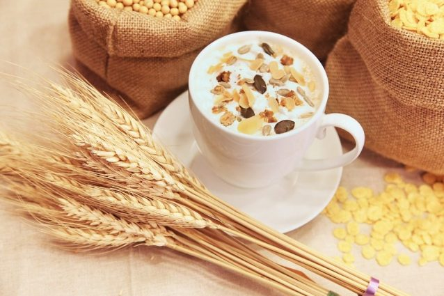 alimenti per evitare di perdere grasso grasso addominale