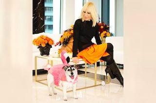 Ad Halloween Donatella Versace non si traveste ma trasforma il cane in un fenicottero