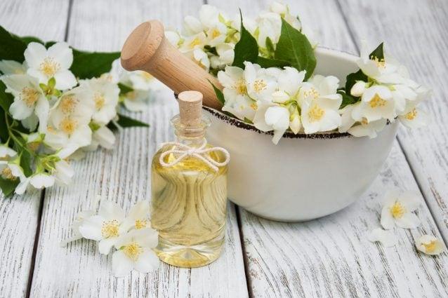 Olio essenziale di gelsomino: proprietà benefiche, utilizzi e controindicazioni