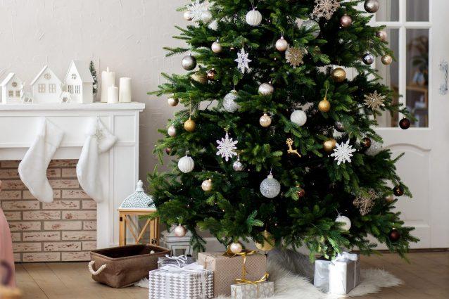 Alberi Di Natale Foto.Albero Di Natale 2019 Tendenze Colori E Addobbi