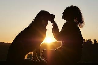 Parlare con il proprio cane è normale. Quali sono i benefici di vivere con un amico a 4 zampe.