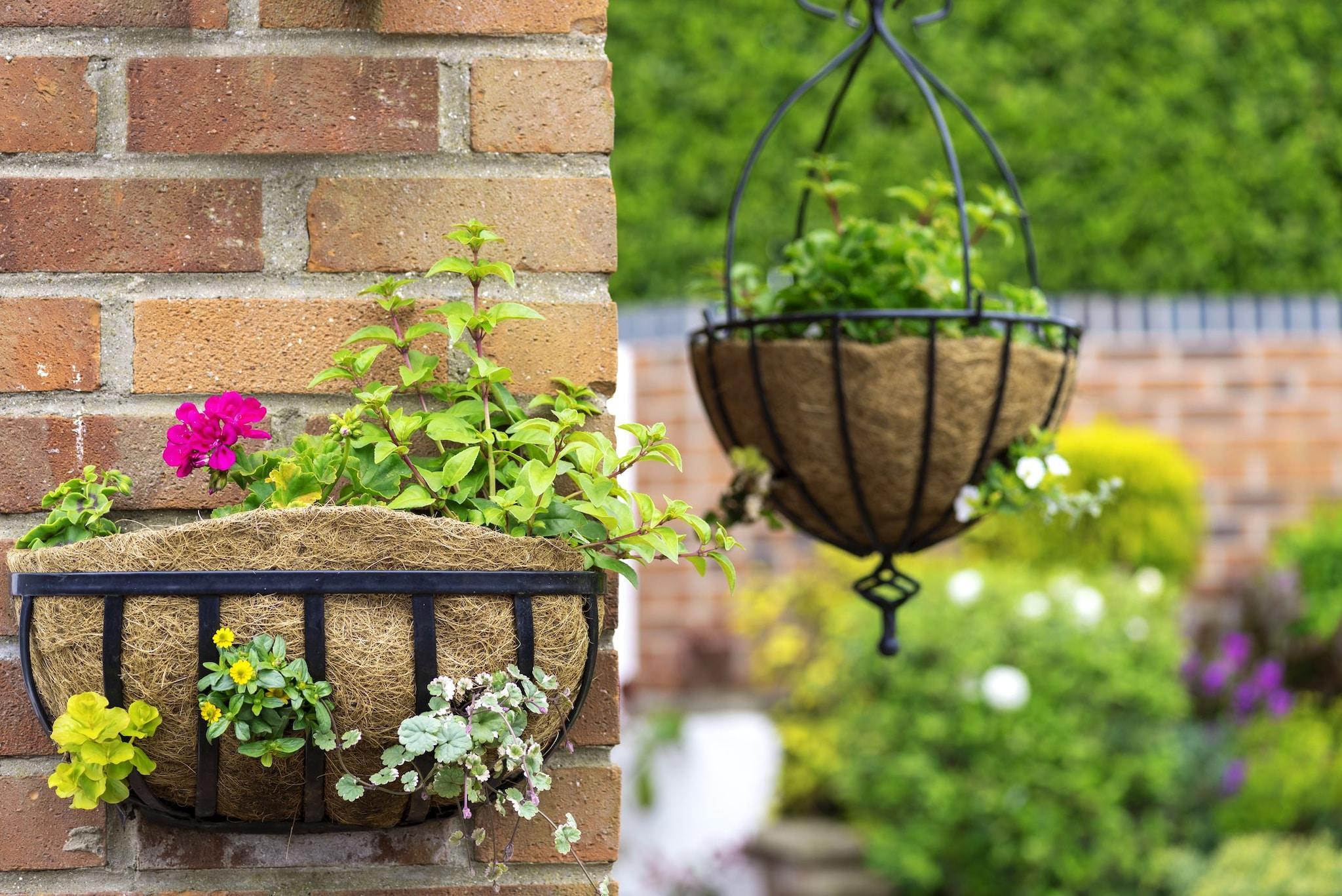 Arredare Un Giardino Idee come arredare un giardino senza spendere molto