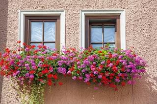 Le 10 migliori fioriere per esterni e terrazzi