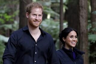 Harry e Meghan, il nome del cane adottato è dolcissimo: è ispirato a uno dei loro primi appuntamenti