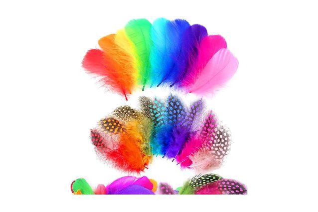 piume colorate per decorazioni Sunshine