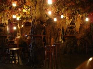 I bar più strani d'Europa: dal retto al ghiaccio, passando per il bosco