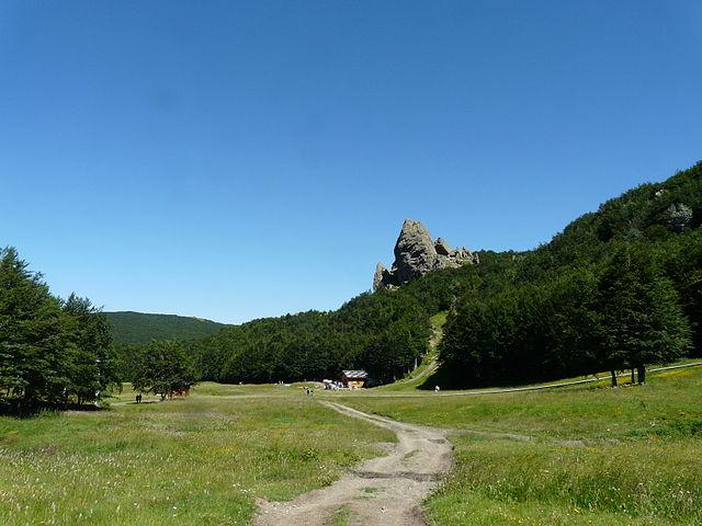 Prato Cipolla in estate