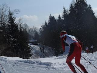 Le piste da sci di fondo in Valsorda, nel comune di Gualdo Tadino