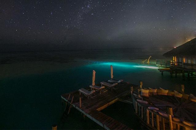 Il Gili Lankanfushi, nelle Maldive, è l'hotel vincitore assoluto del Travelers' Choice Hotel Awards 2015.