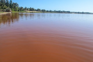 Lago rosa in Senegal, una meraviglia naturale dal colore magico (FOTO)