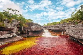 Caño Cristales, il fiume più colorato del mondo (FOTO)