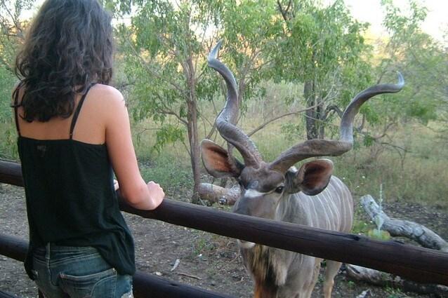 Marloth Park, Sudafrica