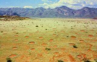 Il mistero dei cerchi fatati nel deserto africano (FOTO)