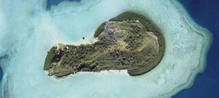 L'isola a forma di pene si trova nelle Fiji, è in vendita e costa poco