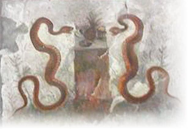 Affresco trovato nella casa dell'Efebo a Pompei