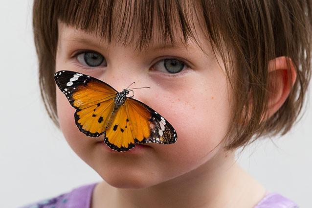 Sensetional Butterflies a Londra (LaPresse).