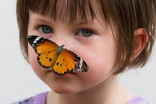 La sensazionale mostra delle farfalle che stupirà grandi e piccini