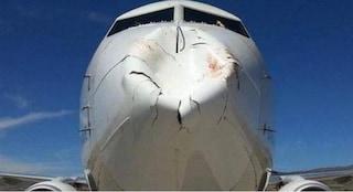 Terrore in aereo: scontro con volatili causa evidente ammaccatura della parte anteriore