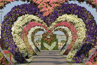 Miracle Garden, un'oasi fiorita nel deserto di Dubai
