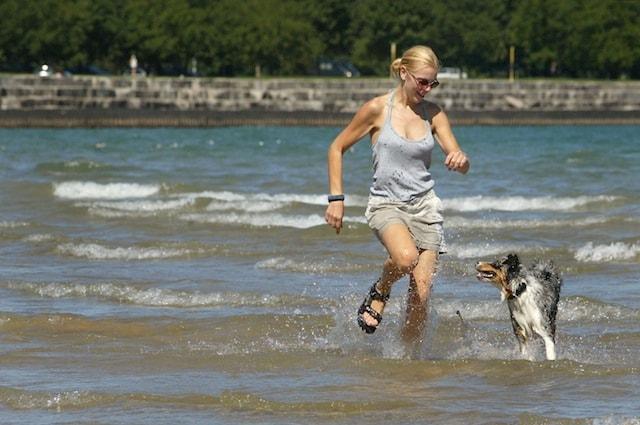 La regione Sicilia sempre più dog friendly.