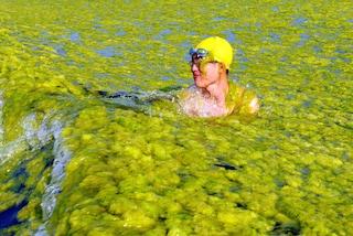 Spiagge invivibili tra alghe, folla ed immondizia