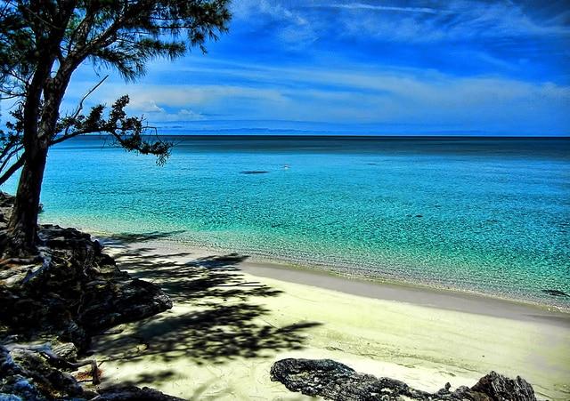 Spiaggia di Current sull'isola di Eleuthera, nelle Bahamas (Foto di Trish Hartmann).
