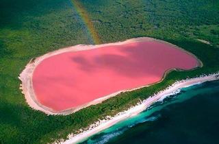 I laghi più rosa del mondo (FOTO)