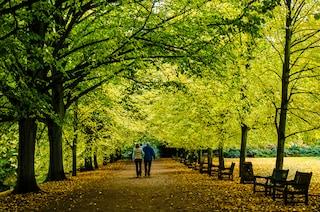 10 parchi di Londra da visitare assolutamente