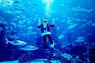 Babbo Natale è un sub nell'hotel sottomarino di Dubai