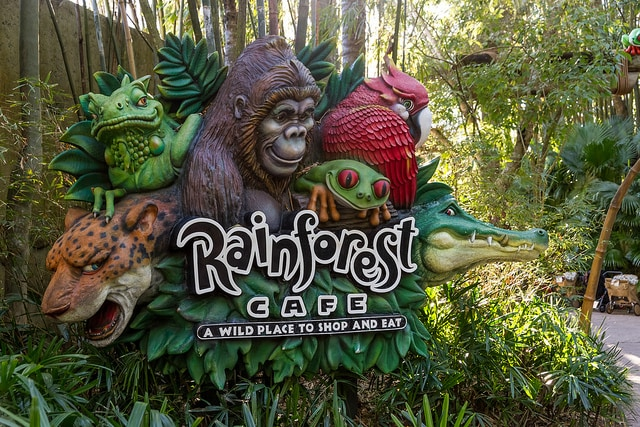 Rainforest Café – Foto di Lee