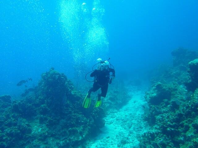 Immersione a Cayman Brac – Foto di The Squirrelfish