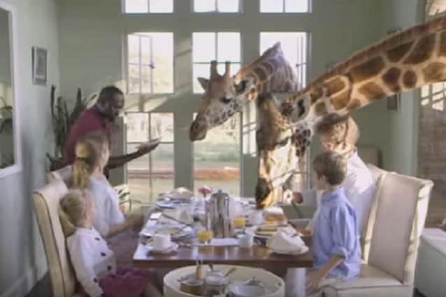 Colazione con le giraffe nel Giraffe Manor di Nairobi, Kenya