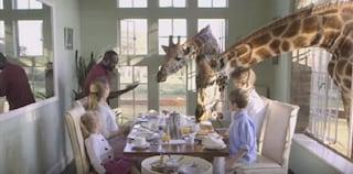A tavola con le giraffe nel safari-hotel in Kenya